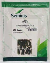 Семена огурца Маша MASHA F1 250с