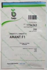Семена огурца  Амант AMANT F1 250 с