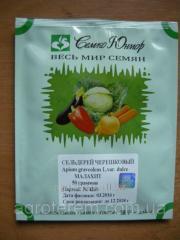 Seeds of a celery petiolar Malachite of 50 g