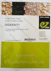 Семена томата Садин F1 (Sadeen F1) 1000с