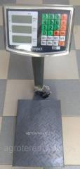 Весы электронные 300 кг (железная нога и площадка)
