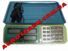 Весы электронные 55 кг Domotec (DT806B)