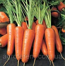 Семена Моркови Курода 0,5кг.