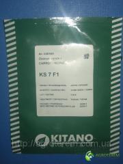 Семена Моркови Мацури КС  ( KS 7) 10 000 c