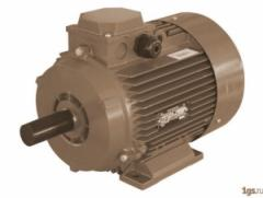 Electric motor with built-in thermal...