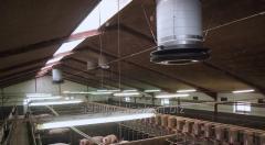 La maquinaria para la cría de cerdos