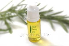 Hair oil of a tea tree