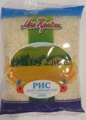الأرز طويل