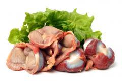Estómago de pollo (pollo molleja)