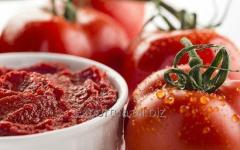 Tomatenpaste in Metallfässern innen mit