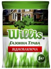 Відновлююча насіння газонних трав Willis (1 кг 10 кг)