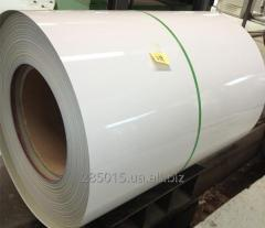 Roll galvanized RAL 9003 0,38 of mm. China