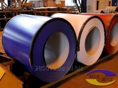 Roll galvanized RAL 5002 0,35 of mm