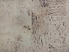 Корок настінний Amorim Europa PB
