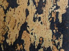 Корок настінний Amorim Rustico P