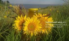 Chabansky honey to a raznotravya of 2017