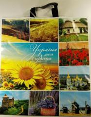 Пакет с петлевой ручкой (42x47+3/60 мк) Украина моя краина ХВГ(25шт/уп.)