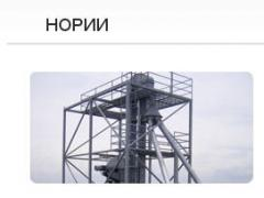 Grain noriya