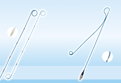 Стент трасплантат почки (RS)