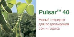 Пульсар 40