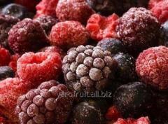 Замороженные ягоды (вишня,смородина,клубника,ежевика,черника и другие)