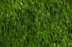 Травяное покрытие ActiveТurf