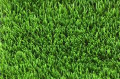 Покрытие для футбольного поля EVO – C