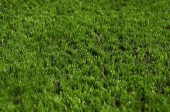 Покрытие для футбольного поля MAGIC GRASS LSR