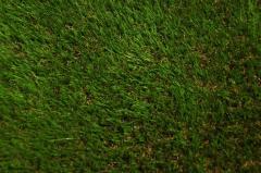 Искусственная трава для ландшафта Doga