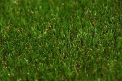 Искусственная трава для ландшафта Ekobahar 29 мм