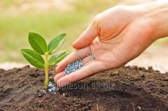 Probiotics for plants and restoration of life of