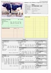 Сперма быка Пакет UA 530018690 (голштин черно-пестрый)