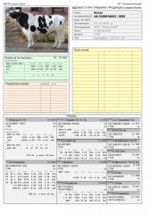 Сперма быка Козак UA 5300018693 (Голштин черно-пестрый)