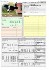 Сперма быка Байконур UA 5300018709 (Голштин черно-пестрый)