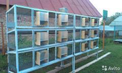 Grid for cages of animal 60х60х2,3 (2х0.5) m