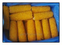 Замороженная кукуруза в початках бланшированная (Украина)