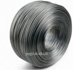 Rod iron of GOST Group 10,0mm