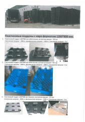 Plastic pallets with euro a format of 1200*800 mm.
