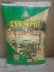 Субстрат торфяной для пальм, юк, фикусов. 5л