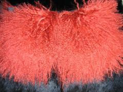 Вироби хутряні (шапки, шуби, аксесуари)