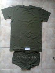 T-shirts, pants. Knitted, olive.
