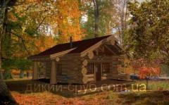 Дом с дикого сруба дачный