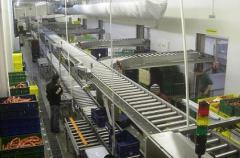 Система приводных рольгангов ( конвейеров )