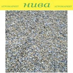 Гравій для фільтростанцій фракція 1-2 мм Роста 1 кг