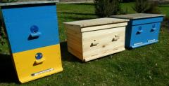 Beehive plank bed