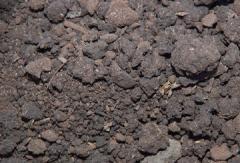 Peat low-lying, biohumus, production of a