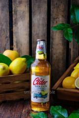 """Cider lemon of """"Cider Lemon"""