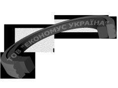 Роторное уплотнение R10-FS