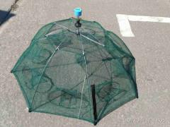Раколовка-зонтик.