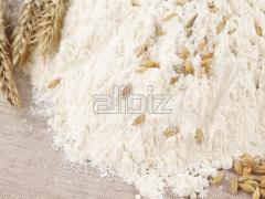 Premium wheat flour for export. payment order bag